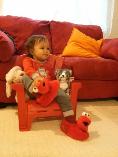 The throne of cuteness