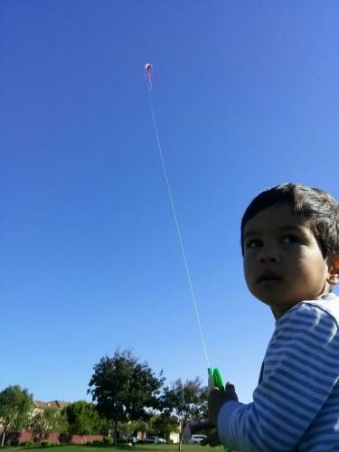 Kite pilot