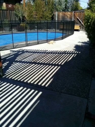 Sun dog in front of new pool fence