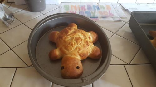 """Turtle bread success"""