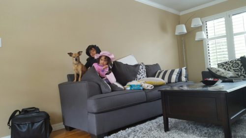 Family couch and dog